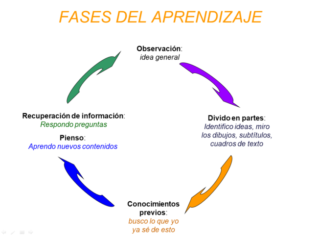 Fases del Aprendizaje